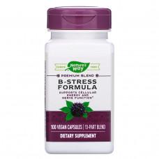 Natures Way, Комплекс витаминов В и антиоксидантов для борьбы со стрессом, 100 капсул