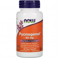Now Foods, Пикногенол, 60 мг, 50 капсул в растительной оболочке