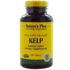 Natures Plus, Бурая водоросль, 300 таблеток