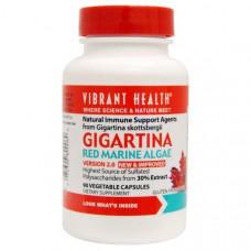 Vibrant Health, Гигартина, красная морская водоросль, версия 2.0, 90 растительных капсул
