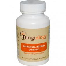 Fungiology, Лентинула Эдодес полного спектра (шиитаке), сертифицированный органический продукт, поддержка на клеточном уровне, 90 вегетарианских
