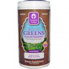 Genesis Today, Основные овощи, семена льна и спирулина, 15.5 унций (440 г)