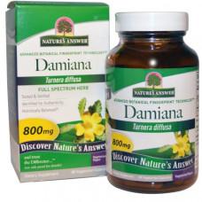 Natures Answer, Лист дамианы, 800 мг, 90 растительных капсул