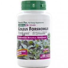 Natures Plus, Herbal Actives, Тропическая мята, 125 мг, 60 растительных капсул