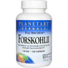 Planetary Herbals, Форсколин полного спектра, 130 мг, 120 капсул