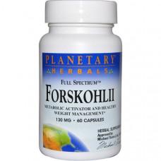 Planetary Herbals, Форсколин полного спектра, 130 мг, 60 капсул