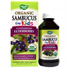 Natures Way, Organic Sambucus для детей, из стандартизованный бузины, вкус ягод, 4 жидких унций (120 мл)