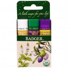 Badger Company, Подарочный набор бальзамов для губ, зеленая коробка, набор из 3 шт. по 0,15 унции (4,2 г)